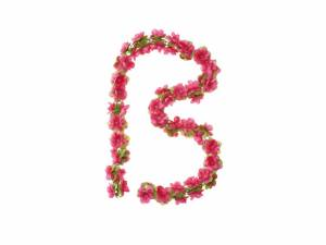 Basil guirlande de fleurs fuchsia
