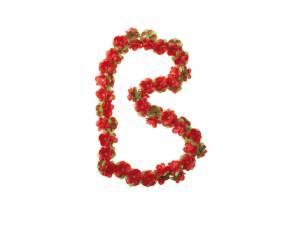 Basil guirlande de fleurs rouge